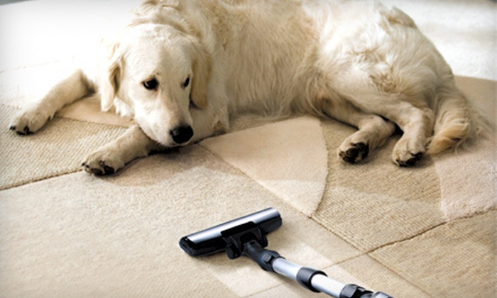 Champion Carpet Cleaning - Pigeon: $39 for 300 Square Feet of Carpet Cleaning from Champion Carpet Cleaning ($99 Value)