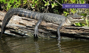 Jean Lafitte Tours: 90-Minute Boat Tour of Jean Lafitte National Park for One or Two from Jean Lafitte Swamp Tours (Up to 34% Off)