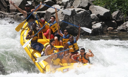 Half- or Full-Day Rafting Trip with Hot Barbecue Lunch from Action Whitewater Adventures (Up to 47% Off)