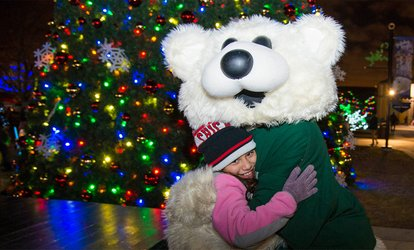 image for One Adult or Child/ Senior Admission to Holiday Magic at Brookfield Zoo (Up to 35% Off)