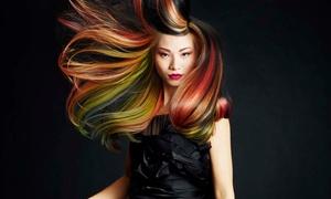 Untangled Paul Mitchell Focus Salon: Haircut, Highlights, and Style from UnTaNgLed Paul Mitchell Focus Salon (60% Off)