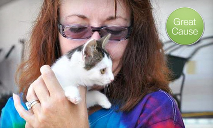 Animal Adoption Network, Inc. - Louisville: $10 Donation for a Rescued-Cat Enclosure