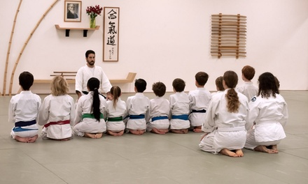 $25 for $100 Groupon — Aikido Florida Aikikai