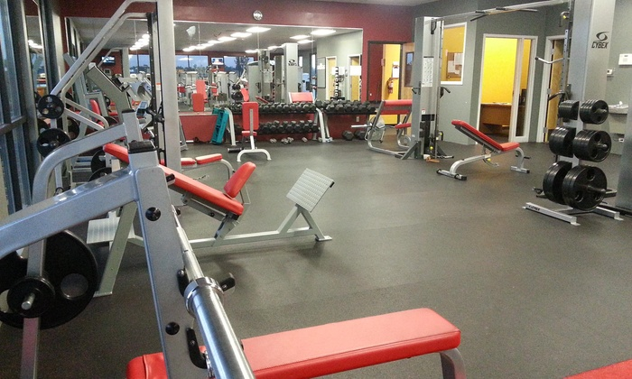 The Gym - Star: 12-Week Gym Membership at The Gym (65% Off)