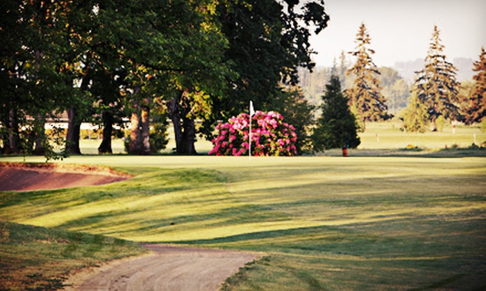 Meriwether National Golf Club - Hillsboro: 18-Hole Round of Golf for Two or Four with Cart Rental at Meriwether National Golf Club (Up to 52% Off)