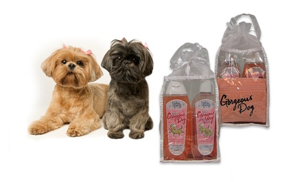 Gorgeous Dog Gift Set with Shampoo, Spray-On No-Rinse Shampoo, Towel, and Carrying Case