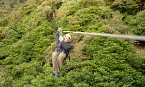 Valley Zipline Tours: Tree Top Zipline Tour for Two or Four at Valley Zipline Tours (Up to 50% Off)