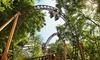 Parc de vacances Duinrell : Cottage avec accès Tikibadet ticket parc