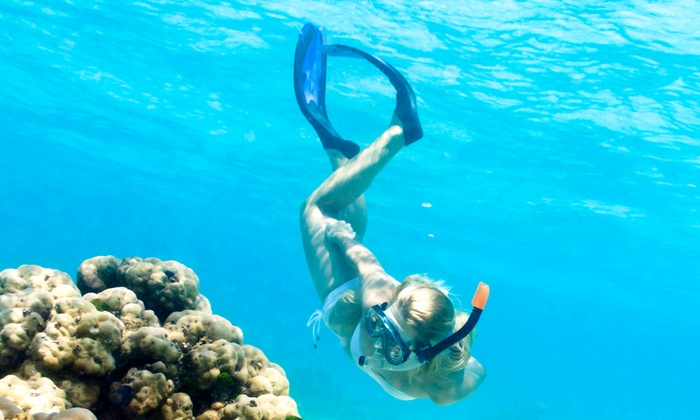 Gemini Dream Charters - Coral Lagoon Resort: Sunset or Reef Snorkeling Cruise from Gemini Dream Charters (Up to 50% Off)