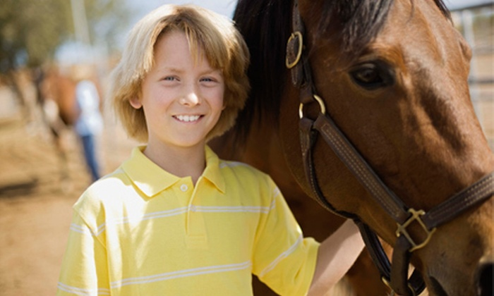 Giddy Up Horseback Riding at Craigmont Equestrian Center - Hagginwood: Two or Four Horseback-Riding Lessons from Giddy Up Horseback Riding at Craigmont Equestrian Center (Up to 55% Off)