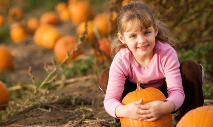 Huffman Farms - Ellensburg: Pumpkin-Patch Activities, Food, and Take-Home Pumpkin for Families of Four or Six at Huffman Farms (Up to 52% Off)