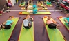 Naples Fitness Boot Camp - Park Shore: 10 or 15 BodyBoard Fitness Classes at Naples Fitness Boot Camp (Up to 82% Off)