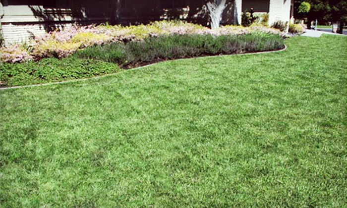Arreola Landscaping and Pool Design - Multiple Locations: $139 for Four Lawn Mowing Services from Arreola Landscaping and Pool Design ($280 Value)