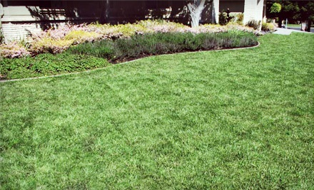 Arreola Landscaping and Pool Design - Arreola Landscaping and Pool Design in