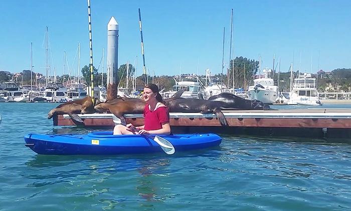 Balboa Kayaks - Balboa Kayaks: Two-Hour Kayak Rental for Two or Four at Balboa Kayaks (Up to 59% Off)