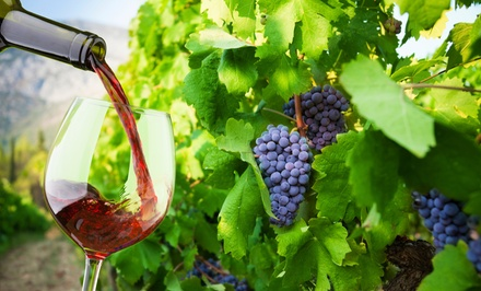 $25 for a Membership with Complimentary Wine Tasting for Two at RagApple Lassie Vineyards ($50 Value)