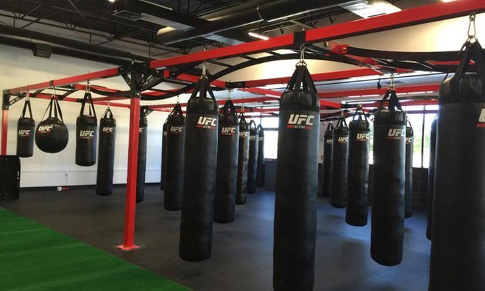 Ufc Gym Flower Mound - Robertson's Creek: Four Weeks of Membership and Unlimited Fitness Classes at UFC Gym Flower Mound (80% Off)