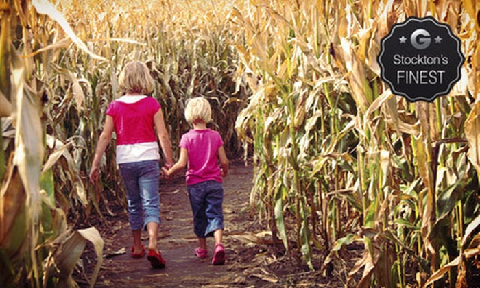 Funworks! - Funworks!: Corn-Maze or Amusement-Park Outing for Two, Four, or Six at Funworks! (Up to 55% Off)