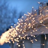 Up to 60% Off Christmas-Light Install and Removal