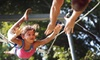 Up to 56% Off Trapeze Class in Venice