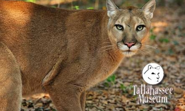 Tallahassee Museum - Lake Bradford/Cascade Lake: $4 for an Adult Day Pass (Up to $9 Value) or $3 for a Child Day Pass ($6 Value) to the Tallahassee Museum