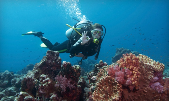 All Wet Scuba - Tempe: PADI Open Water Diver Scuba-Certification Course for One or Two at All Wet Scuba in Tempe (Up to 69% Off)