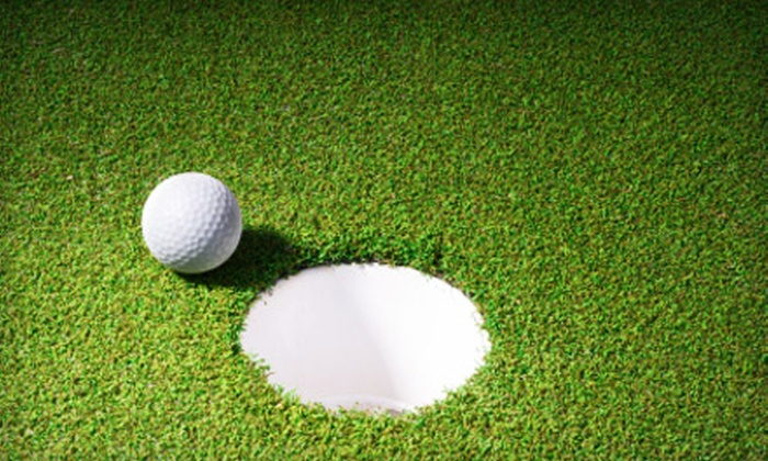 Gary Bos Golf Academy - Multiple Locations: $79 for Four Half-Hour Golf Lessons from Gary Bos Golf Academy ($156 Value)