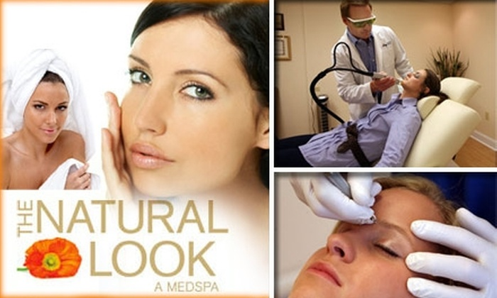 The Natural Look - Nashville-Davidson metropolitan government (balance): $185 for Three Laser Hair Removal Treatments at The Natural Look (Up to $900 Value)