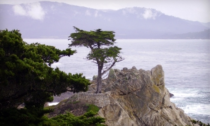 Super Sightseeing Tours - Fisherman's Wharf: $70 for a Tour of Monterey and Carmel for Two from Super Sightseeing Tours ($140 Value)