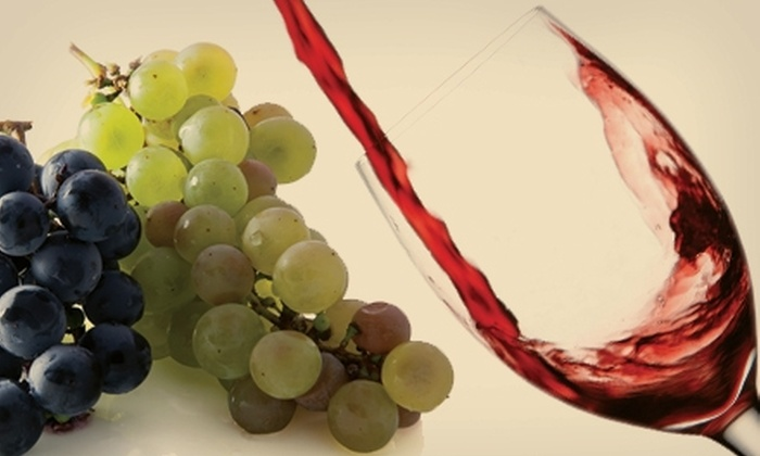 The Vino Gallery - Central West End: $15 for a Wine 101 Class Offered at The Vino Gallery ($30 Value)