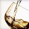Half Off Apple Wine Plus Winemaking Credit