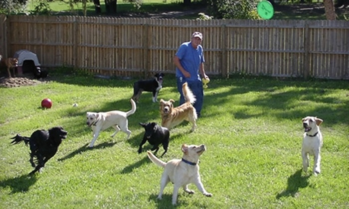 Plantation Pet Resort - Oviedo: $78 for a Two-Night Stay for Two Pets, Two Baths, and Two Pedicures at Plantation Pet Resort in Oviedo (Up to $174 Value)