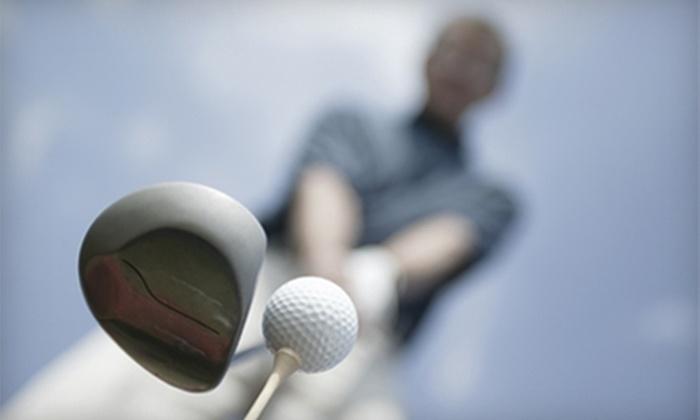 Baehmann's Golf Center - Cedarburg: Mini Golf, Golf, or Private Swing Analysis at Baehmann's Golf Center in Cedarburg