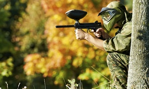 Sahara Amusment: Paintball with 100 or 200 Paintballs Each for Up to Four at Sahara Amusement (49% Off)