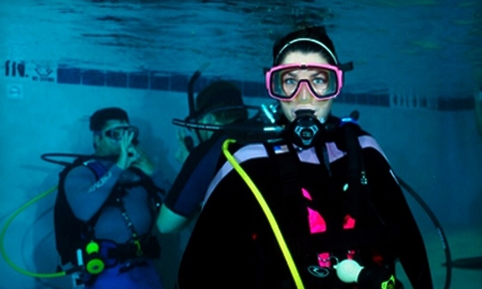 Divers Supply - Greater Arlington,Southside: Scuba-Diving Class at Divers Supply. Two Options Available.