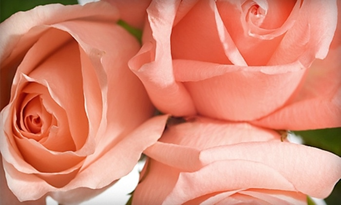 Dyer Avenue Florist - Cranston: $20 for $40 Worth of Floral Arrangements at Dyer Avenue Florist in Cranston