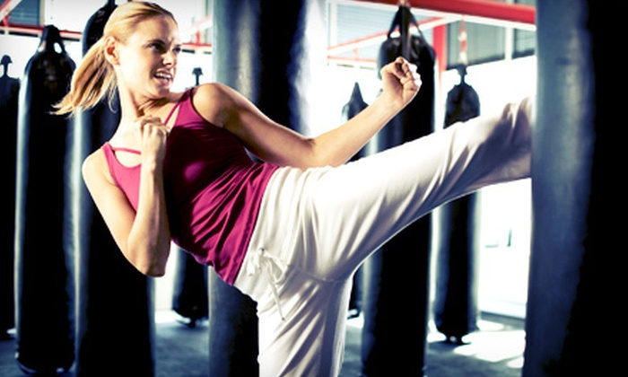 Destiny Fitness - Streetsville: 5 or 10 Cardio-Kickboxing Classes at Destiny Fitness in Mississauga (Up to 65% Off)
