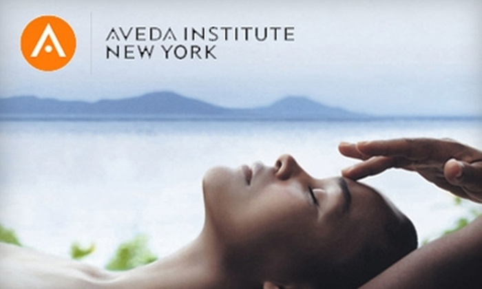 Aveda Institute New York - New York City: $25 for $50 Worth of Salon and Spa Services at Aveda Institute New York