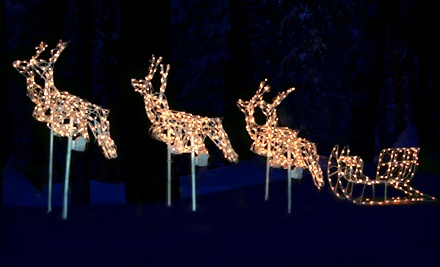 Holiday Lights Package (a $25 value) - Pleasant Ridge and Smokeys BBQ in Wellsville