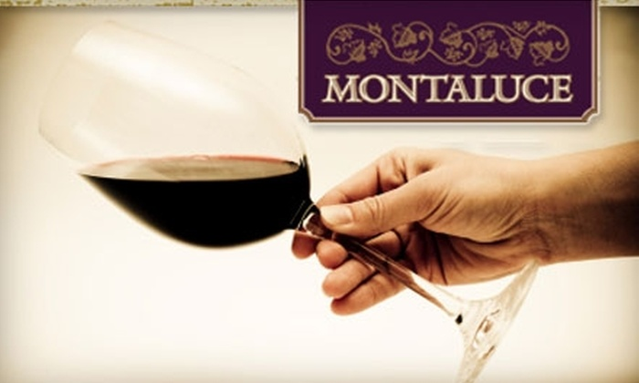 Montaluce Winery - Dahlonega: $11 for Two Wine-Tasting Flights at Montaluce Winery ($22 Value)
