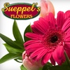 $10 for Flowers from Sueppel's Flowers