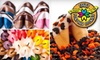 Fancy Fortune Cookies **DNR** - Pike: $15 for $35 Worth of Wise Desserts at Fancy Fortune Cookies
