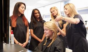 Dorado Coiffure: Cours de coiffure de jour ou de soir pour débutants ou de perfectionnement chez Dorado Coiffure (jusqu'à 67% de rabais)