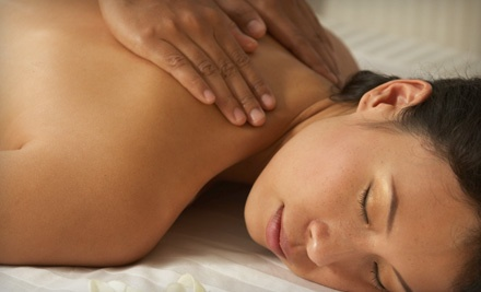 One 60-Minute Serenity Swedish Massage (a $65 value) - Mona Lisa's Massage & Wellness in Hermitage