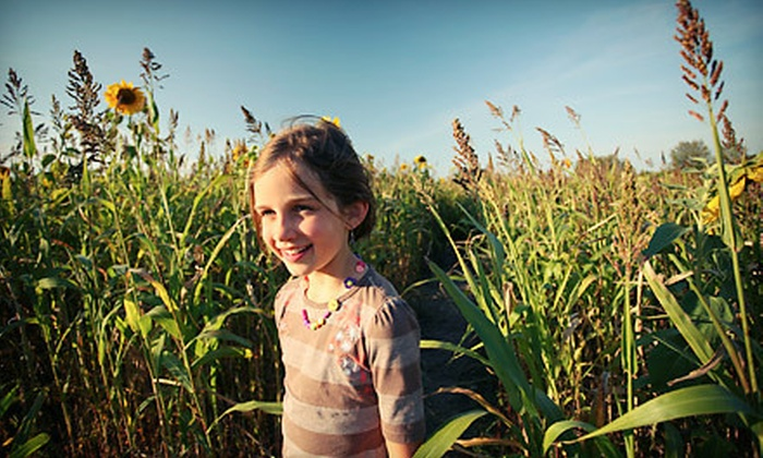 Piney Acres Farm - Green: Corn Maze Admission for Two, Four, or Six at Piney Acres Farm (Up to Half Off). Four Options Available.