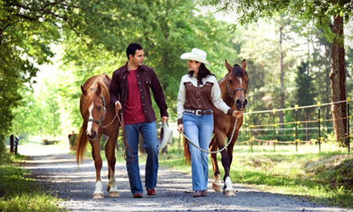 Young's Paso Fino Ranch - Silver Springs Shores: $38 for One-Hour Horseback Trail Ride for Two at Young's Paso Fino Ranch ($76 Value)