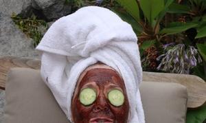 BeeLASHtastic Brow & Skin Studio: $35 for $70 Worth of a Facial and Eye Brow Wax at BeeLASHtastic Brow & Skin Studio