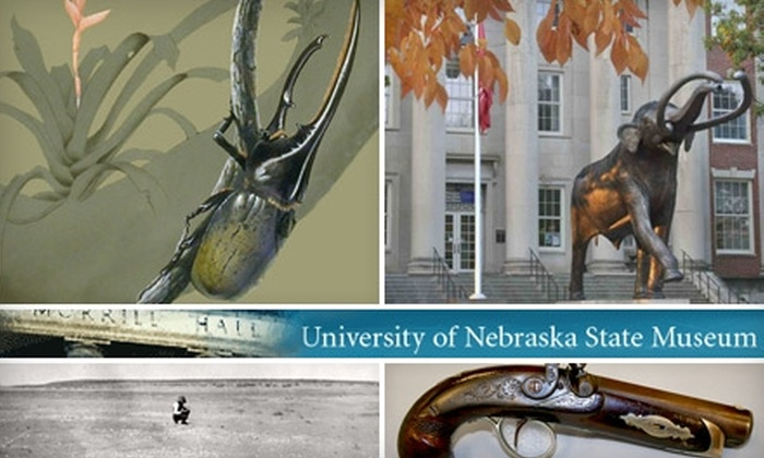 Morrill Hall - Lincoln: One-Year Membership to Morrill Hall. Choose From Two Options.
