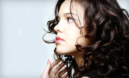 Haircut and Blowout (a $60 value) - E'Clips Salon in Jersey City
