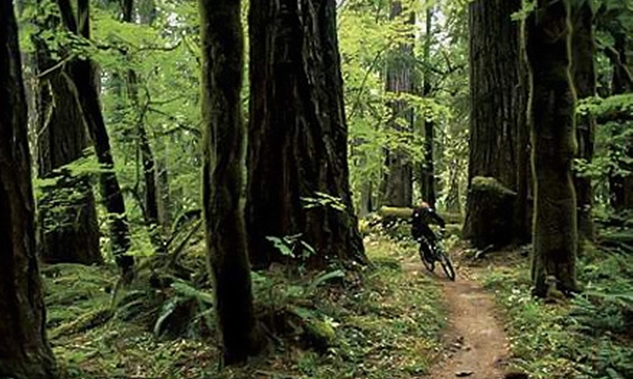 McKenzie River Mountain Resort - McKenzie: $25 for Mountain-Bike Shuttle Service for Two from McKenzie River Trail (Up to $50 Value)